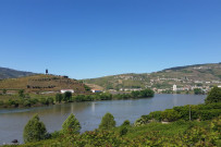 View of the Douro